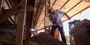 Coffee Prices Soar After Bad Harvests and Insatiable Demand