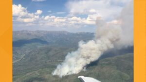 Morgan Creek fire grows to over 1,000 acres overnight
