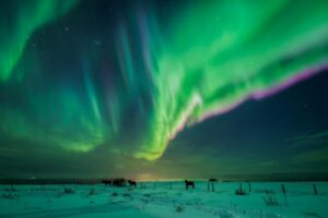 Aurora hunting in my darkened room: Iceland's Northern Lights are wondrous on a virtual tour, Travel News & Top Stories